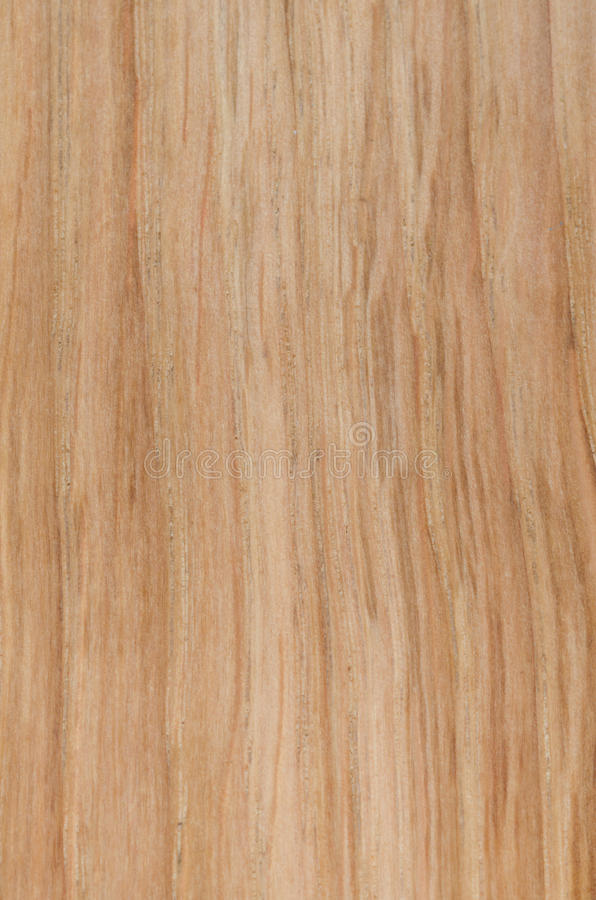 Texture of light brown wood background stock images for Legno chiaro texture