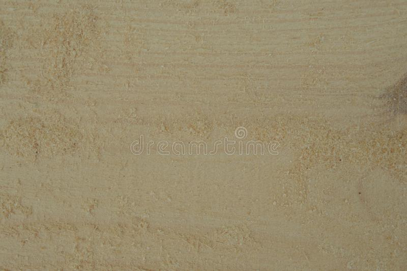 Texture of light wood closeup from sawmill royalty free stock photos