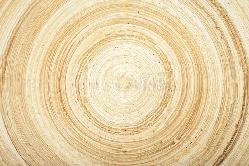 Texture of modern wood circle rings. Beatyful texture of natural modern wood circle rings royalty free stock images