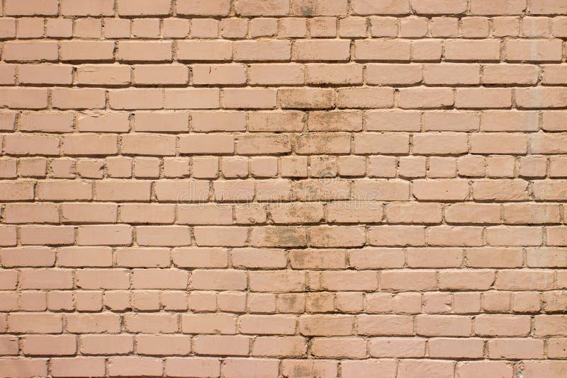Texture moussue de mur en pierre photo libre de droits