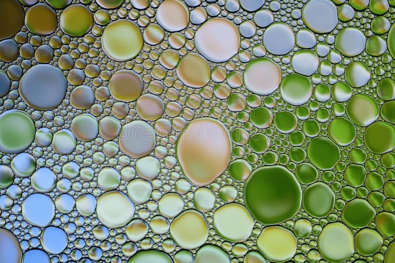 Texture multicolore abstraite de bulles d'huile de l'eau Fond color? photos stock