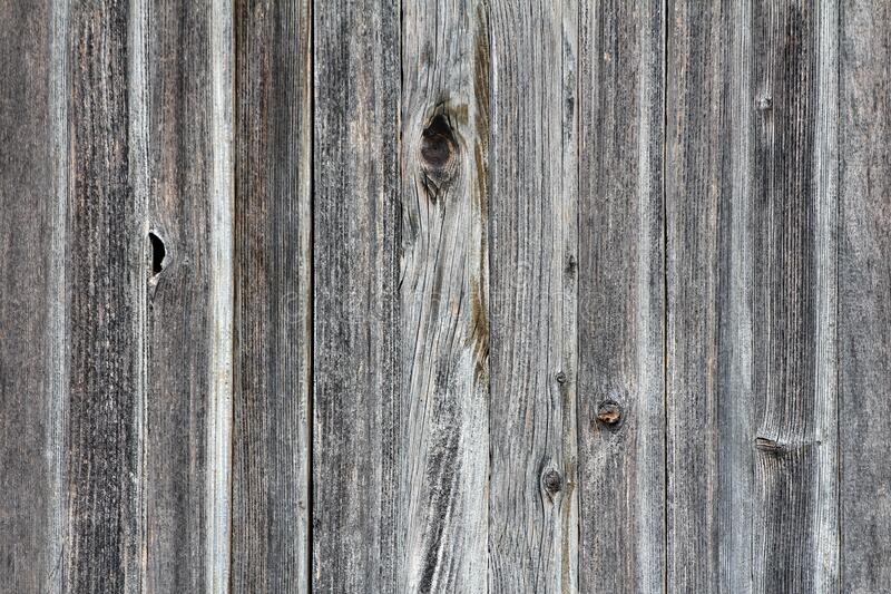 Texture of narrow old dark grey dilapidated vertical wooden boards with classic structure of barn doors. Background wallpaper stock photo