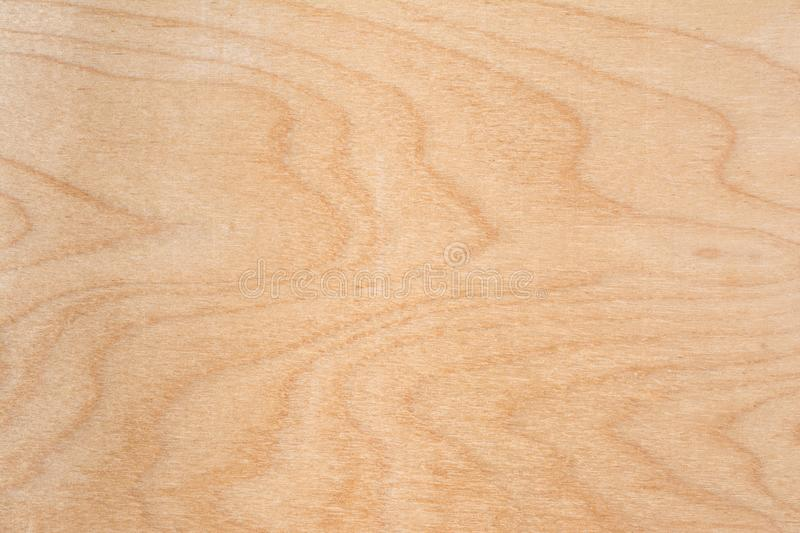 Texture of natural birch plywood, the surface of the lumber is untreated, a lot of fiber and small chips royalty free stock photo