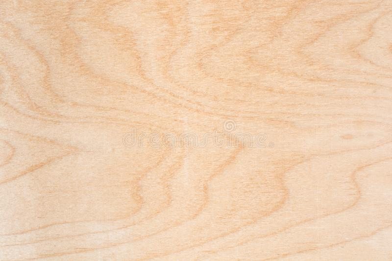 Texture of natural birch plywood, the surface of the lumber is untreated, a lot of fiber and small chips. Close-up abstract background royalty free stock photo