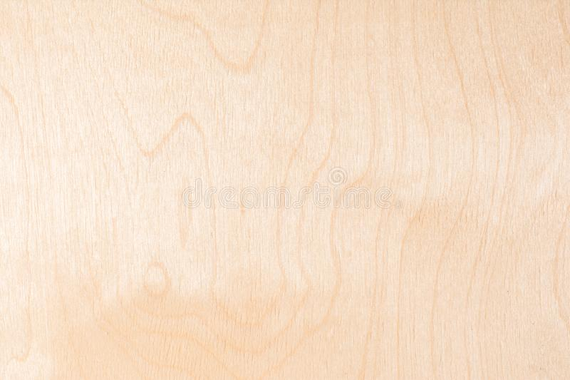 Texture of natural birch plywood, the surface of the lumber is untreated, a lot of fiber and small chips. Light texture of natural birch plywood, the surface of royalty free stock photography