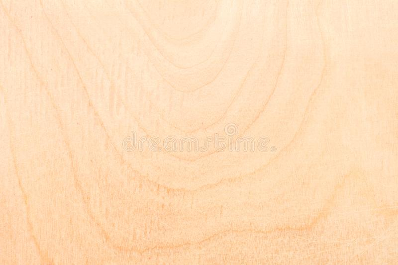 Texture of natural birch plywood, the surface of the wood has been rubbed with sandpaper and scratched. A lot of fiber and small chips, close-up abstract royalty free stock photo