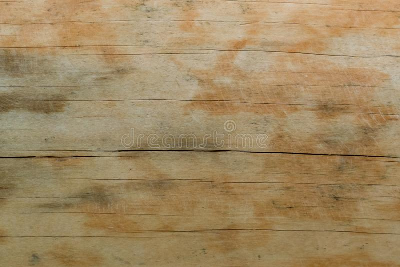 Texture of a natural tree with an unusual structure stock images