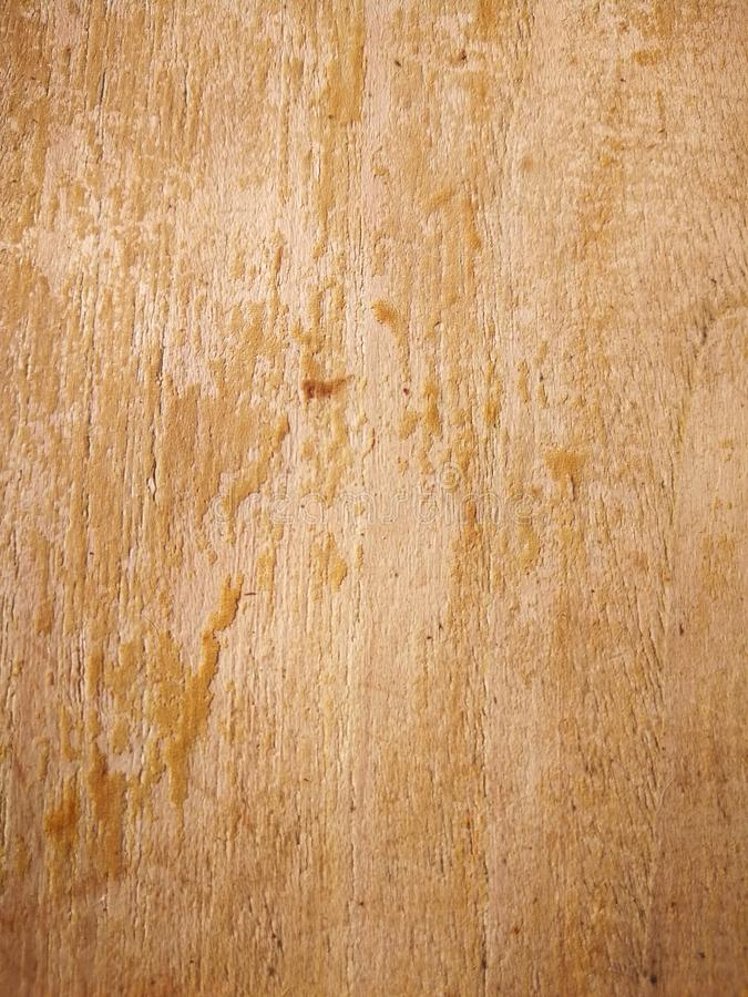 Texture from natural wood grain royalty free stock photos