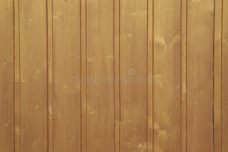 Texture naturelle en bois d'arbre, bois véritable de la meilleure qualité de luxe photos stock