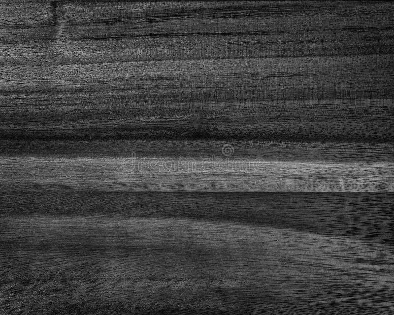 Texture noire d'acacia photographie stock