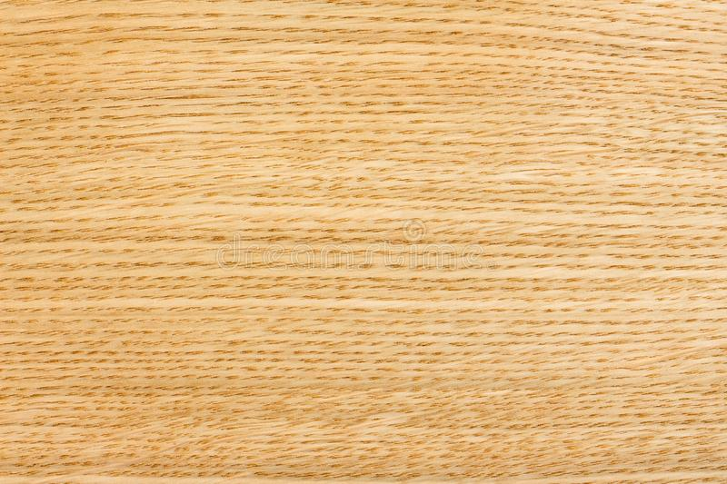 The texture of oak veneer. Background for design_ stock images