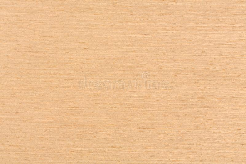 Texture of oak veneer, natural background. royalty free stock photography