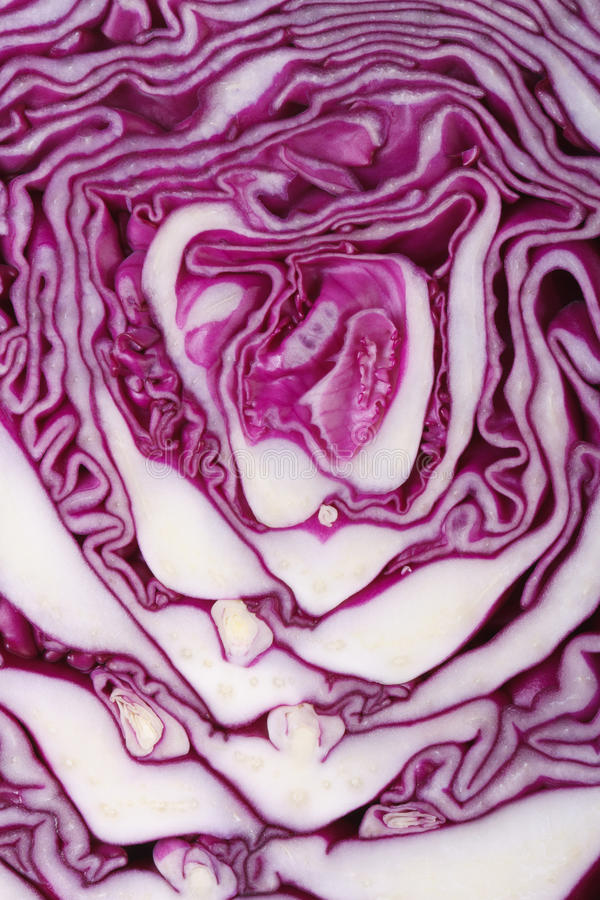 Free Texture Of Red Cabbage Close Up. Macro Royalty Free Stock Photo - 37043465