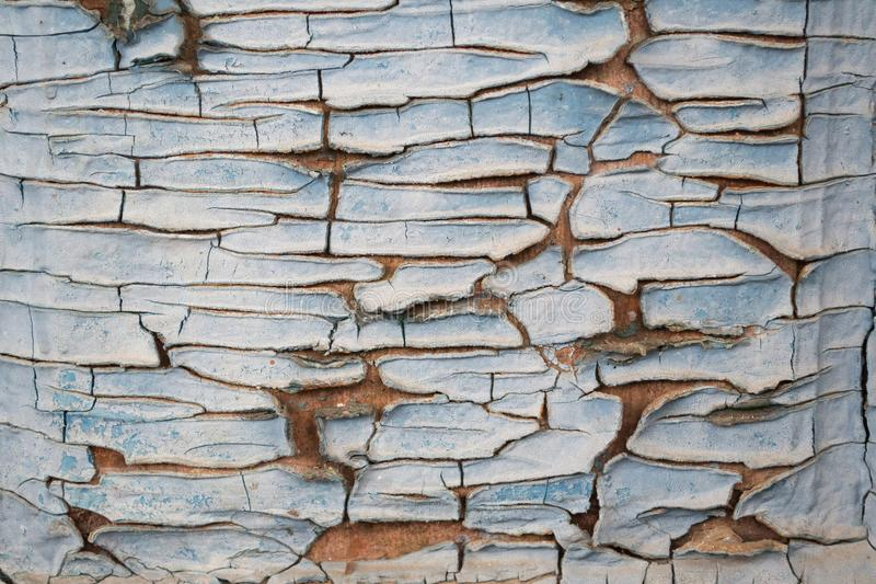 Texture of old cracked wood painted blue. Old, cracked paint in husk.  stock photo