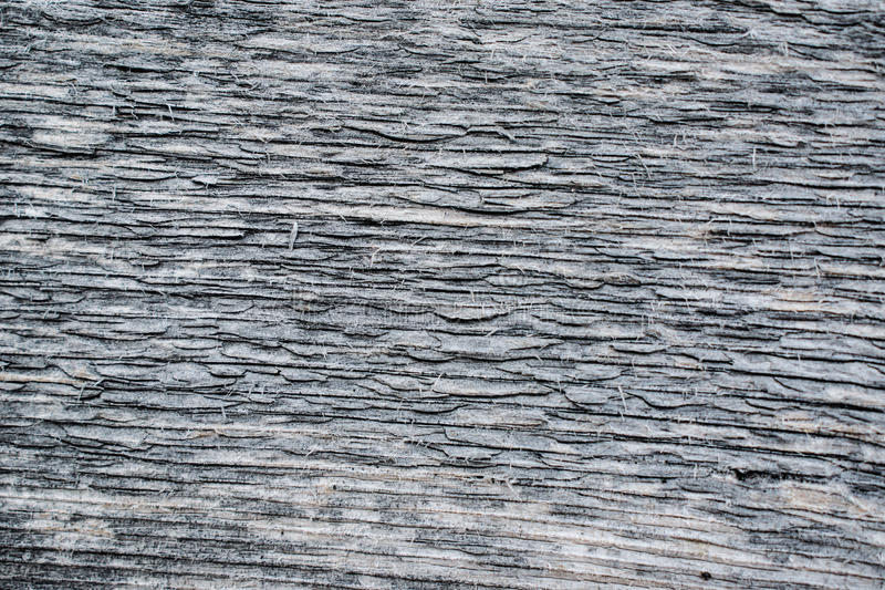 Texture of an old natural wood planks. Closeup royalty free stock photography