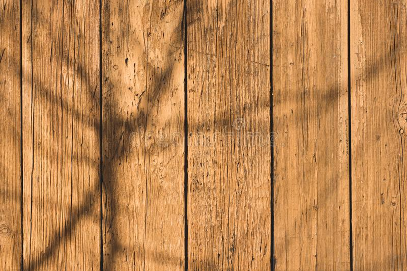 Texture Of Old Painted Wood Background Closeup. Empty Template Stock ...