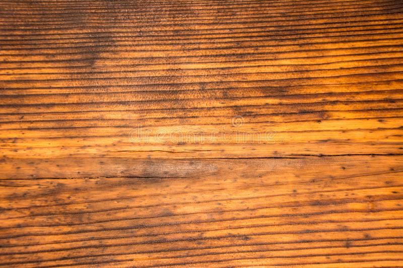 The texture of the old pine. Wood texture royalty free stock photos