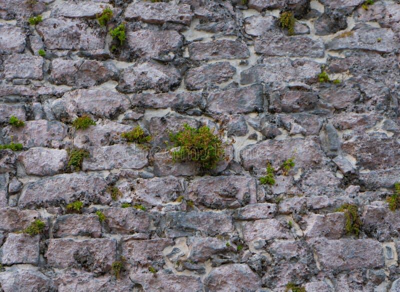 Texture of old stones bricks. Ancient mayan archeological site Tulum. Wallpaper or background. Quintana roo. Yucatan. Mexico stock photos