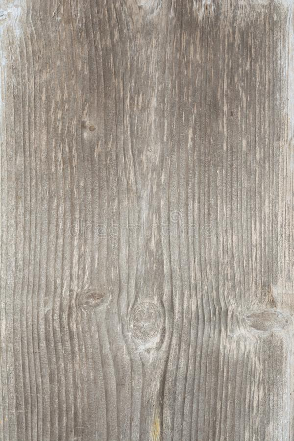 Texture of the old tree with longitudinal cracks, surface of ancient weathered wood, abstract background royalty free stock images
