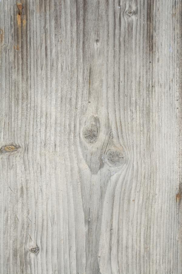 Texture of the old tree with longitudinal cracks, surface of ancient weathered wood, abstract background royalty free stock photos