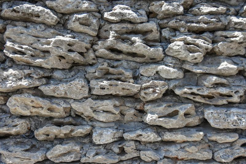 Texture of the old wall of the limestone shell house stock photos