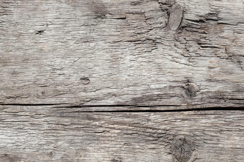 Texture of old weathered gray wood stock photography