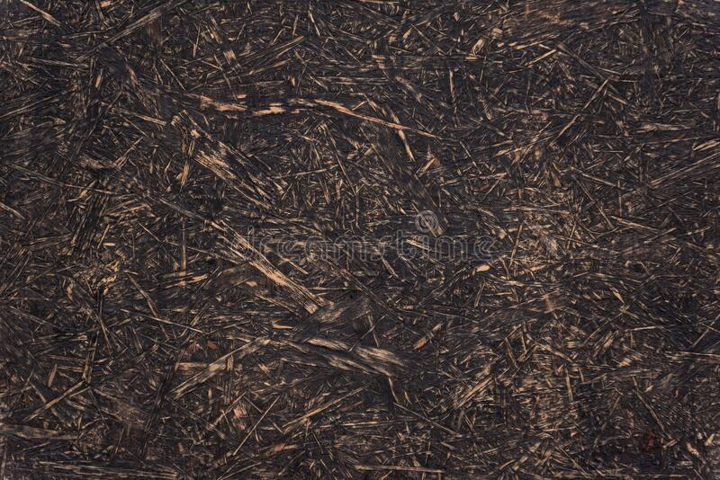 Texture of old wood background abstract surface. Chipboard material. OSB boards royalty free stock image