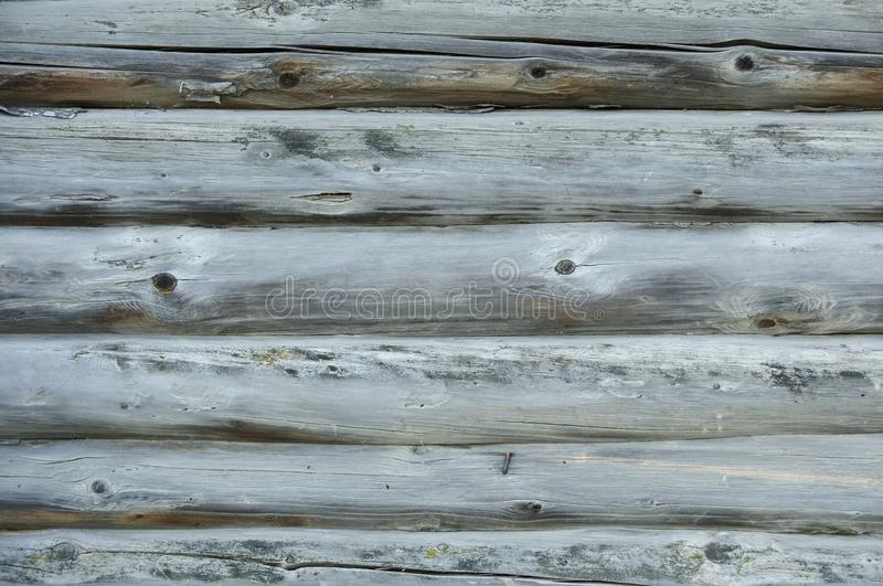 Texture of an old wood oak logs. The trunk of an old tree without bark with a deep crack. A photo of a natural old wood trunk for royalty free stock images