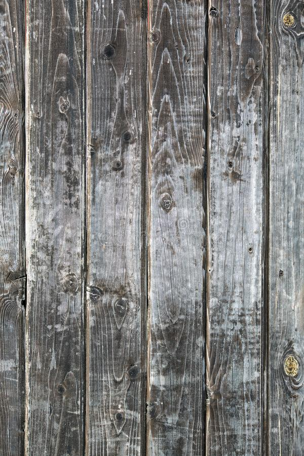 Texture of old worn gray boards. Close up royalty free stock images