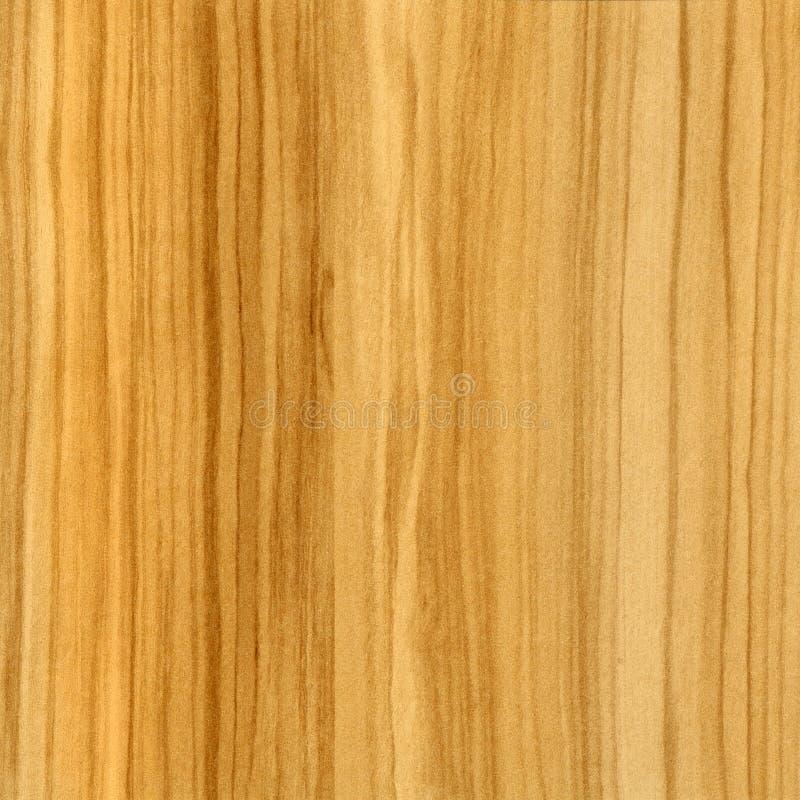 texture olive de fond à en bois illustration stock