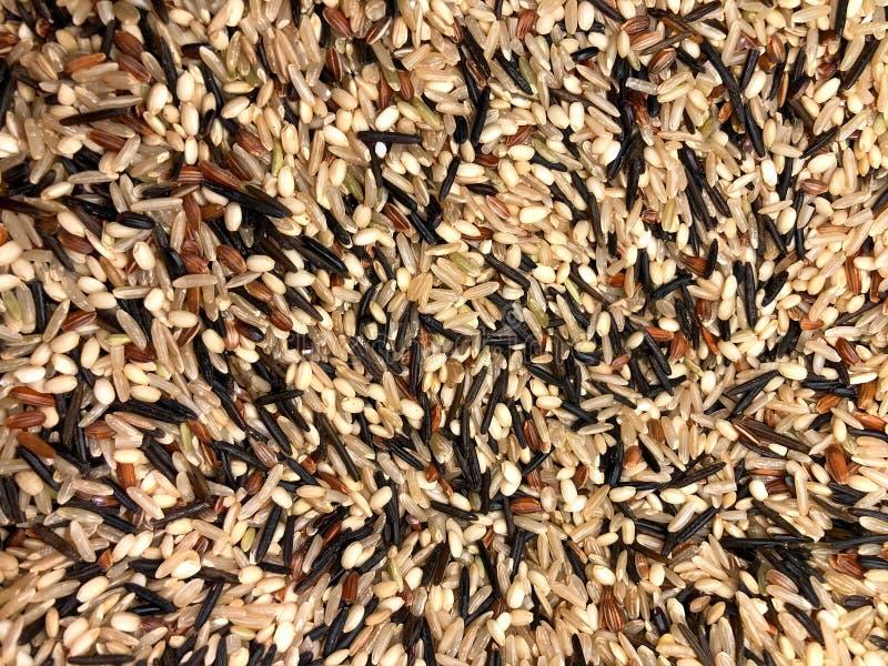 Texture organique de fond de riz brun images stock