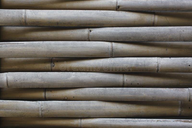 Texture ou fond de mur d'armure de coupe de bambou demi image stock