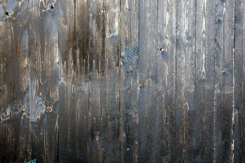 Texture ou fond Texture en bois panneau E cire mastic r photo libre de droits