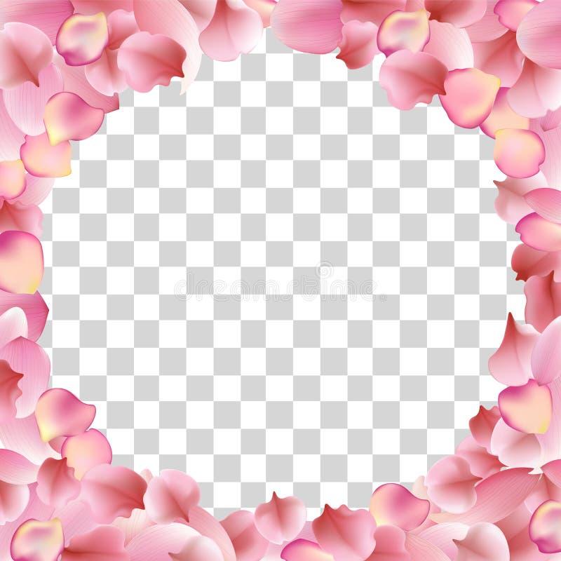 Texture from petals of rose, sakura and lotus vector illustration