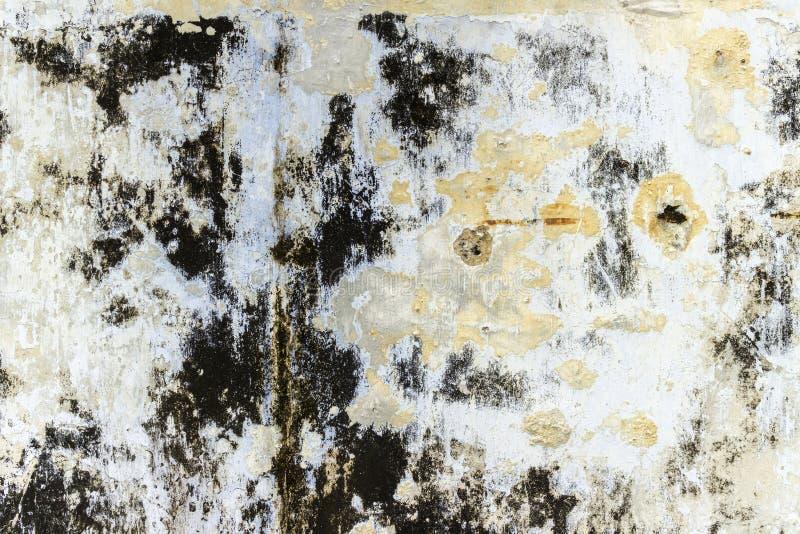 Download Texture stock image. Image of travel, pattern, phangan - 83716753