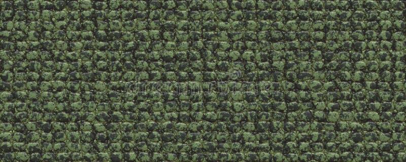 Texture plate de peau de croc image stock