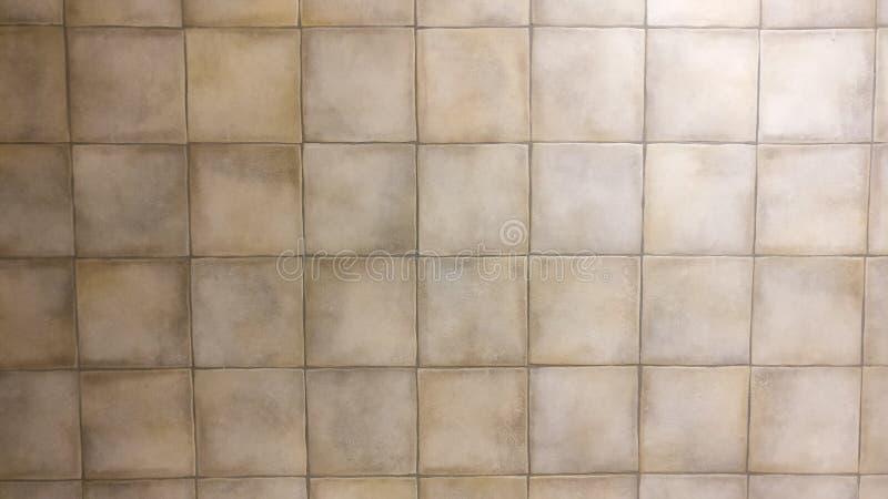 Texture of racholas stock image