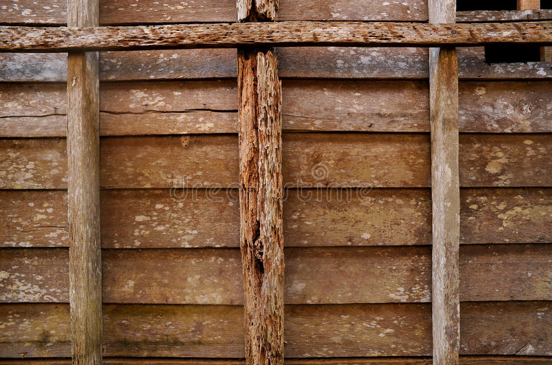 Download Texture Of Real Wood Royalty Free Stock Photo - Image: 14961365