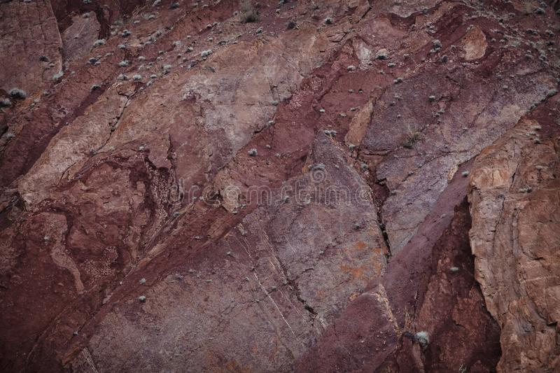 The texture is red and Burgundy. Rock wall with vegetation and crack royalty free stock photo