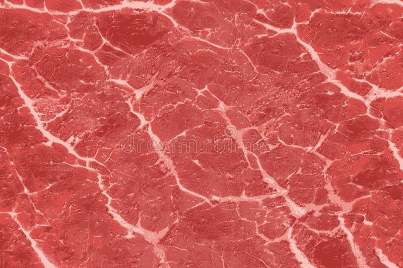 Texture of red meat with white veins patterns royalty free stock photo