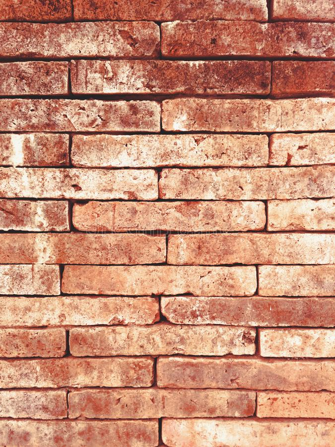 Red old brick wall texture grunge background royalty free stock images