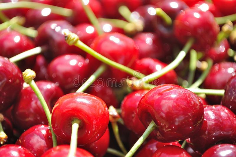 Texture of red ripe cherries royalty free stock photography