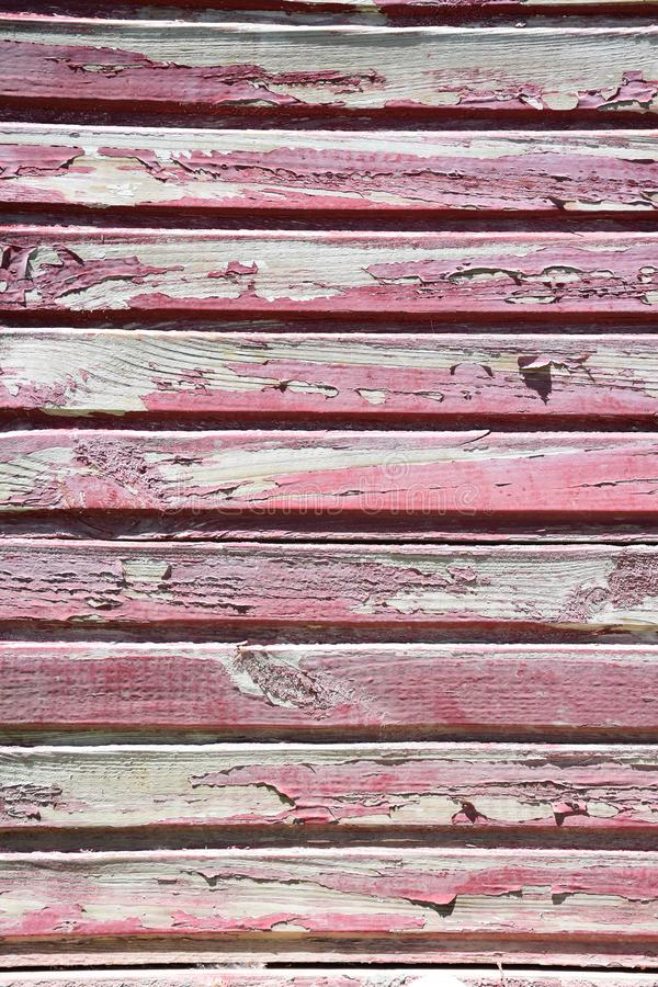 Texture of red wood royalty free stock image