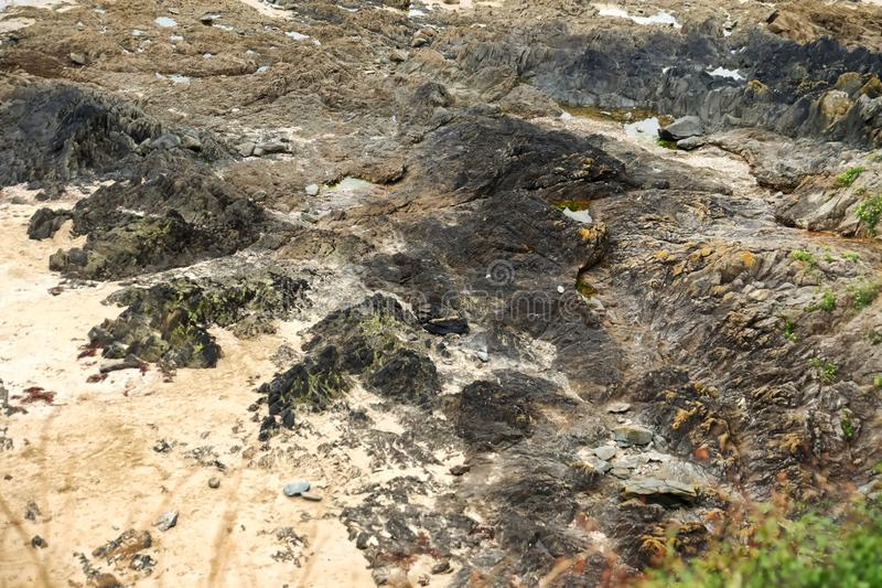 Texture of rocky shore stock image
