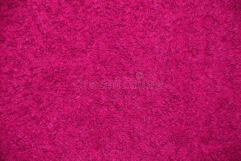 Texture rose image stock