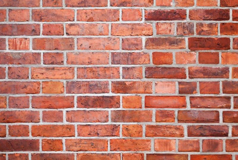 Texture rouge détaillée de fond de mur de briques images libres de droits