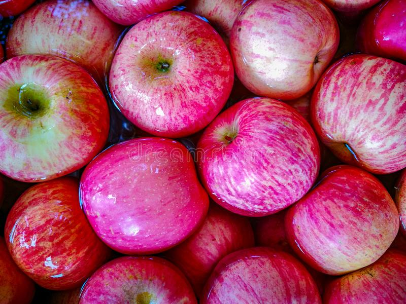 Texture rouge de pomme photo libre de droits