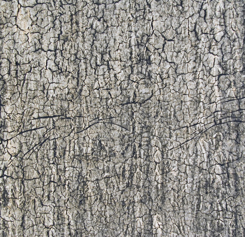 Download The Texture Of Ruberoid On The Roof Royalty Free Stock Photography - Image: 32480497