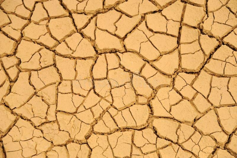 Texture sèche de boue photos stock