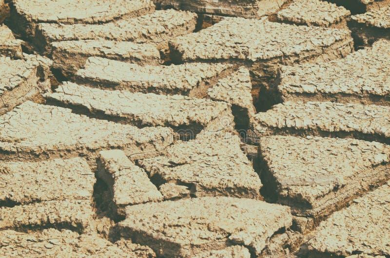 Texture sèche de champ de boue photo libre de droits